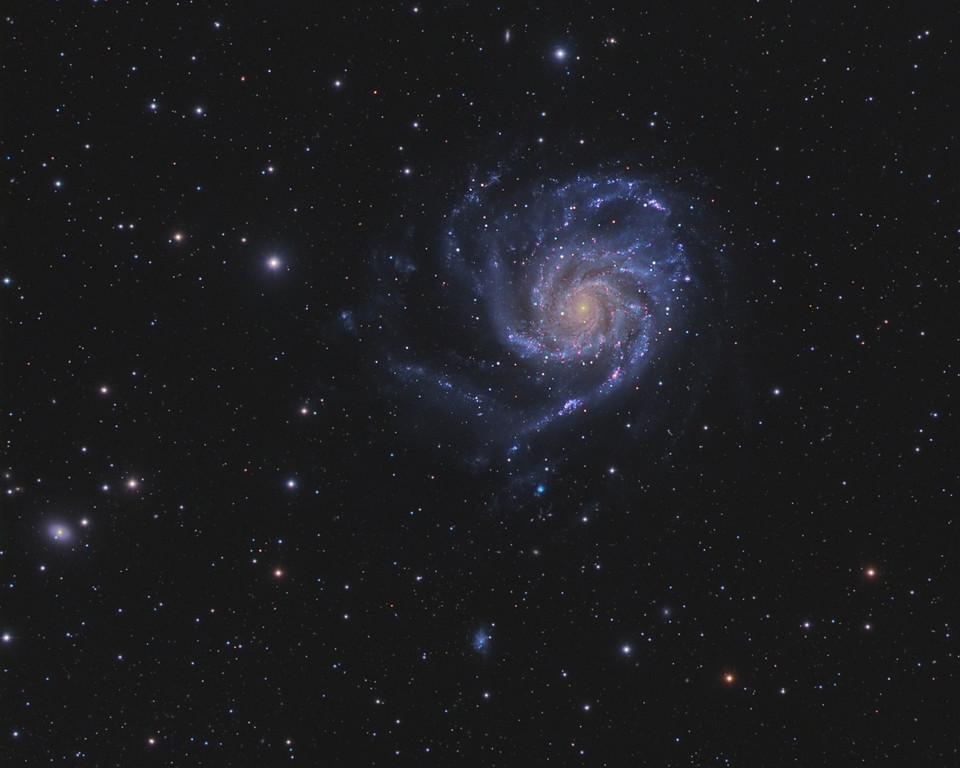 M101-2-Cropped-XL